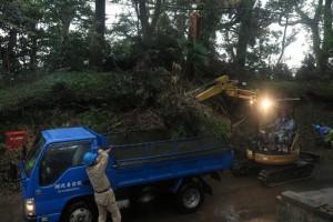 倒木の撤去に地元建設業者が取り組む(袖ケ浦市内、18日撮影)