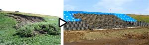 鳴瀬川左岸の被災状況(左)と復旧状況(右)